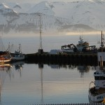 Husavik Harbor, Northern Iceland