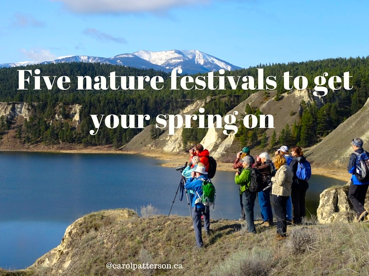 Five nature festivals to get your spring on